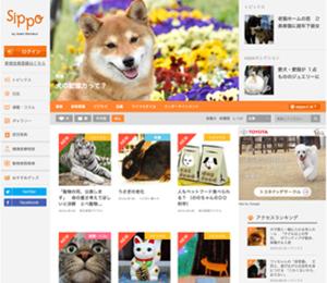 sippo(シッポ)